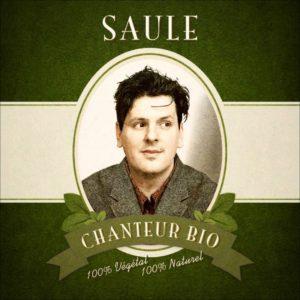Pochette du single Chanteur Bio de Saule
