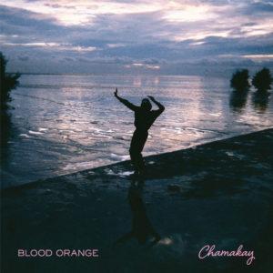 Pochette du single Chamakay de Blood Orange