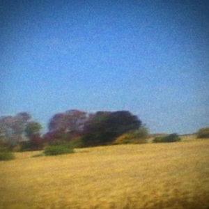 Pochette de l'album Benji de Sun Kil Moon